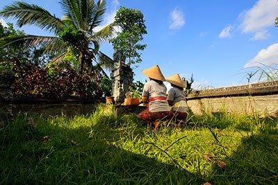 ancient Balinese life