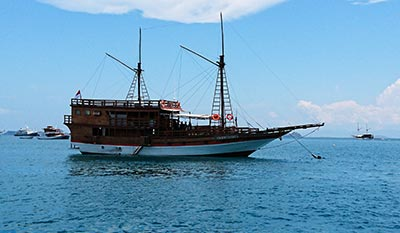 komodo dragon habitats phinisi boat