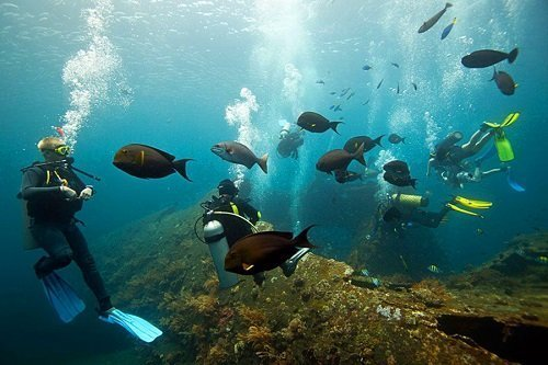 tulamben bali, bali diving, diving point