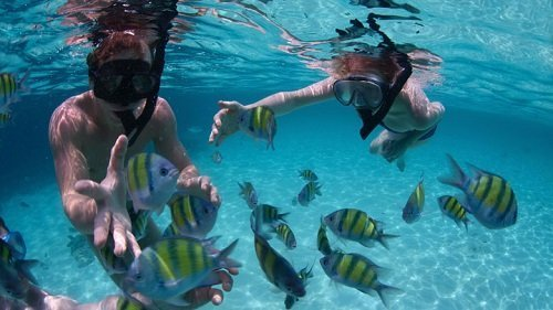 snorkeling lovina bali, diving, bali