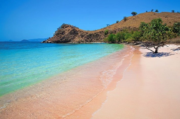 pink beach, komodo island, places to visit