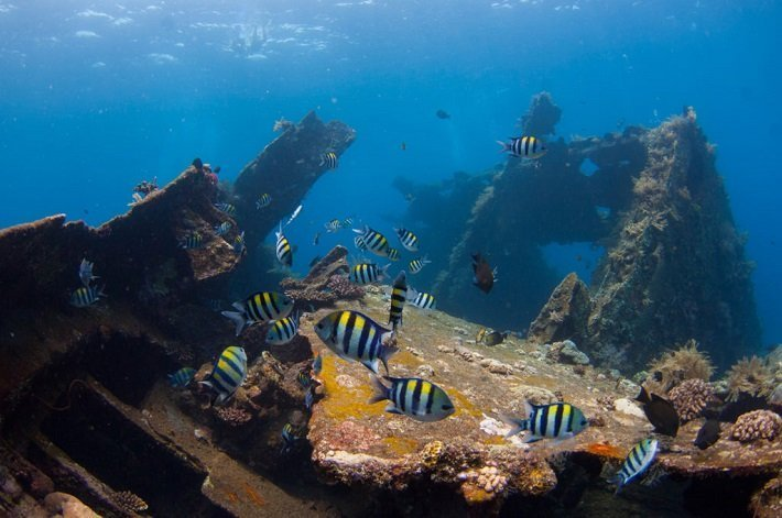 Karangasem with Best Underwater Sites