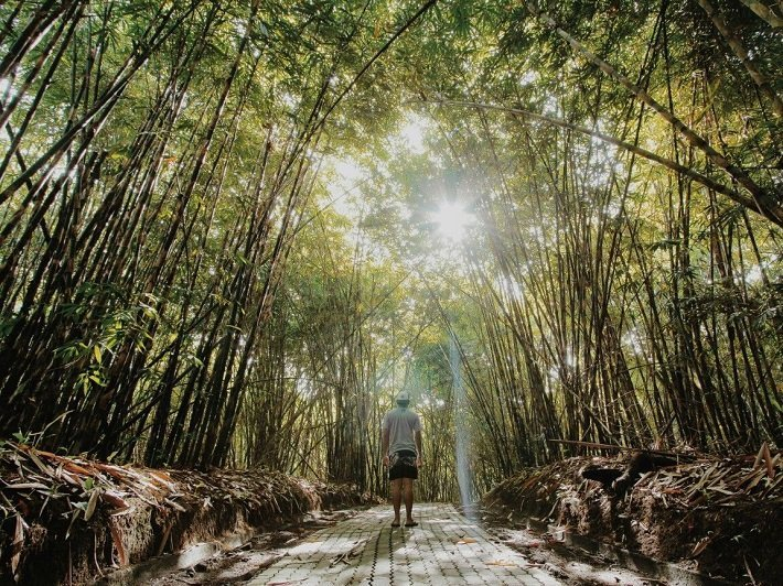 bali penglipuran village, tourist attraction, sightseeing