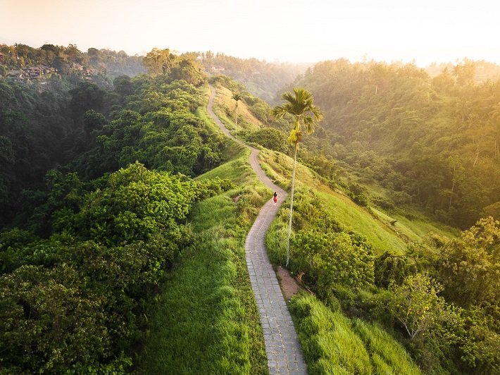 campuhan ridge, ubud attractions, bali