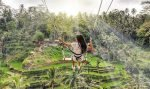 bali swing, bali instagram tours