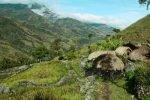 baliem valley, baliem valley tours, west papua