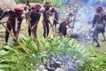 dani ceremony, west papua, dani tribe