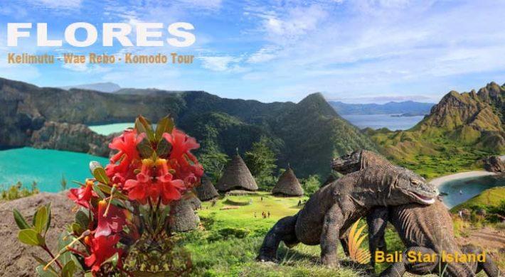 9 Days Flores Kelimutu Wae Rebo Komodo Tour